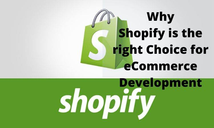 shopify-ecommerce-development